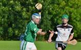 Kilkenny SHC: Shamrocks show real fighting spirit as they roar into semi-finals