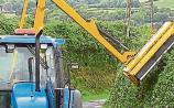 Kilkenny landowners urged to cut back hedges