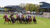 Mental health app Leafyard rolled-out for Irish jockeys