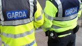 Rise in use of force at mental health incidents, says Garda report
