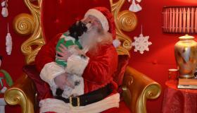 Kilkenny people bring their pets to visit Santa!