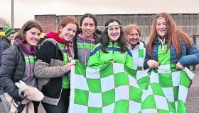 Gallery: Ballyhale Shamrocks Supporters At Newry