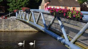 Kilkenny's Lady Desart Bridge to get a fresh coat of paint