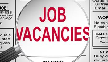JOB ALERT: Horticulturists wanted in Laois, Kilkenny and Tipperary