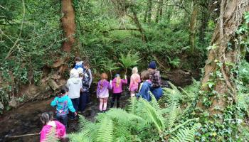 Kilkenny kids are rediscovering nature at Forest School in Castlemorris