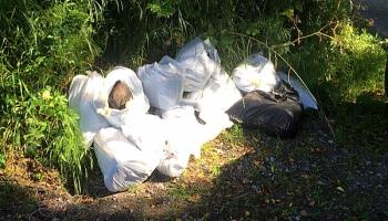 Twelve bags of rubbish dumped in scenic Kilkenny countryside