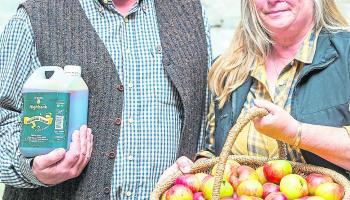 Nine Kilkenny producers named as finalists in Blasna hÉireann awards
