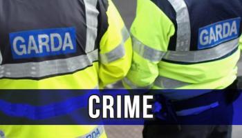 Criminals target North Kilkenny farm in weekend burglary