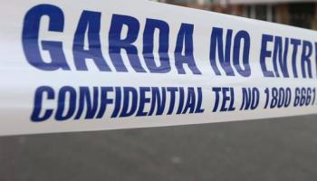 Two arrested and gun seized in Lucan