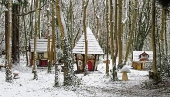 Castlecomer Discovery Park lights up hand crafted Elf Village
