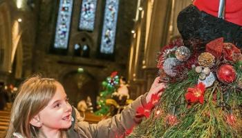 Magical forest will open at Christmas Tree Festival