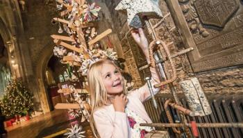 Kilkenny's Christmas Tree Festival is well worth a look