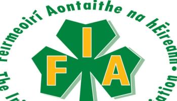 Lamb prices up on the back of strong demand – IFA
