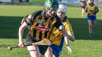 Camogie: Cats open up championship with hard fought victory over Clare