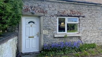 Two Kilkenny cottages for €75k a piece - ideal investment/renovation properties?