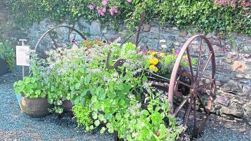 Kilkenny Memories - can you remember the horsedrawn hay rake?