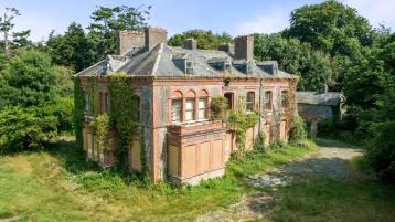 PROPERTY WATCH: Expressions of interest sought for Millbrook House in Abbeyleix