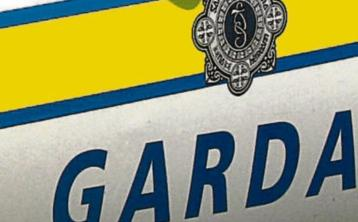 Breaking: Three males in custody following attempted burglary in South Kilkenny