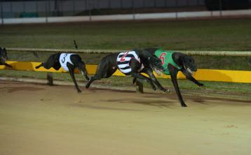 Slaneyside Izzy's burst of pace decisive at Kilkenny track