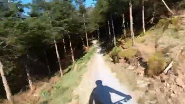 WATCH: Take a thrilling ride on the  Slieve Bloom Mountain Bike Trail