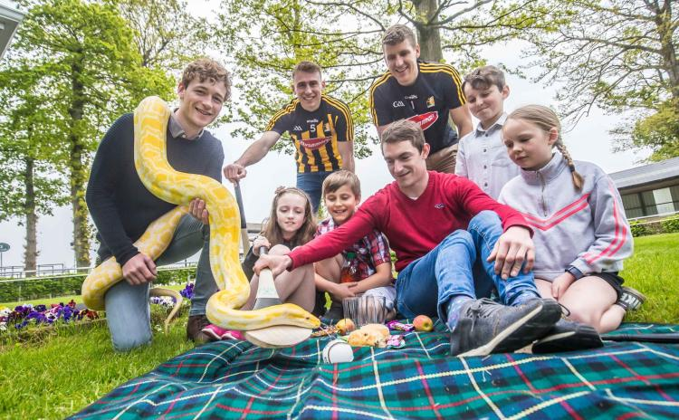 PICTURES: Family Fun Day with Kilkenny hurlers to take place at Gowran Park in June