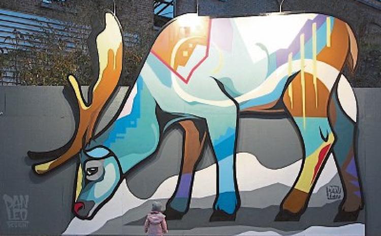 Stunning giant reindeer defies dark winter evenings in Kilkenny