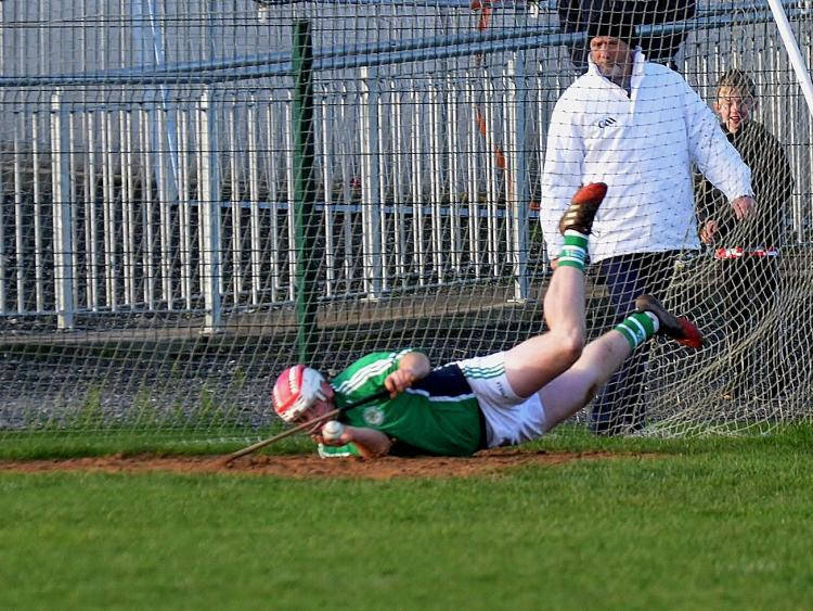 Kilkenny GAA: Shamrocks pushed all the way as they complete senior/under-21 double