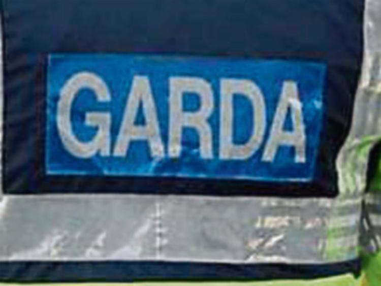 Disturbing report of alleged animal cruelty in Kilkenny City today
