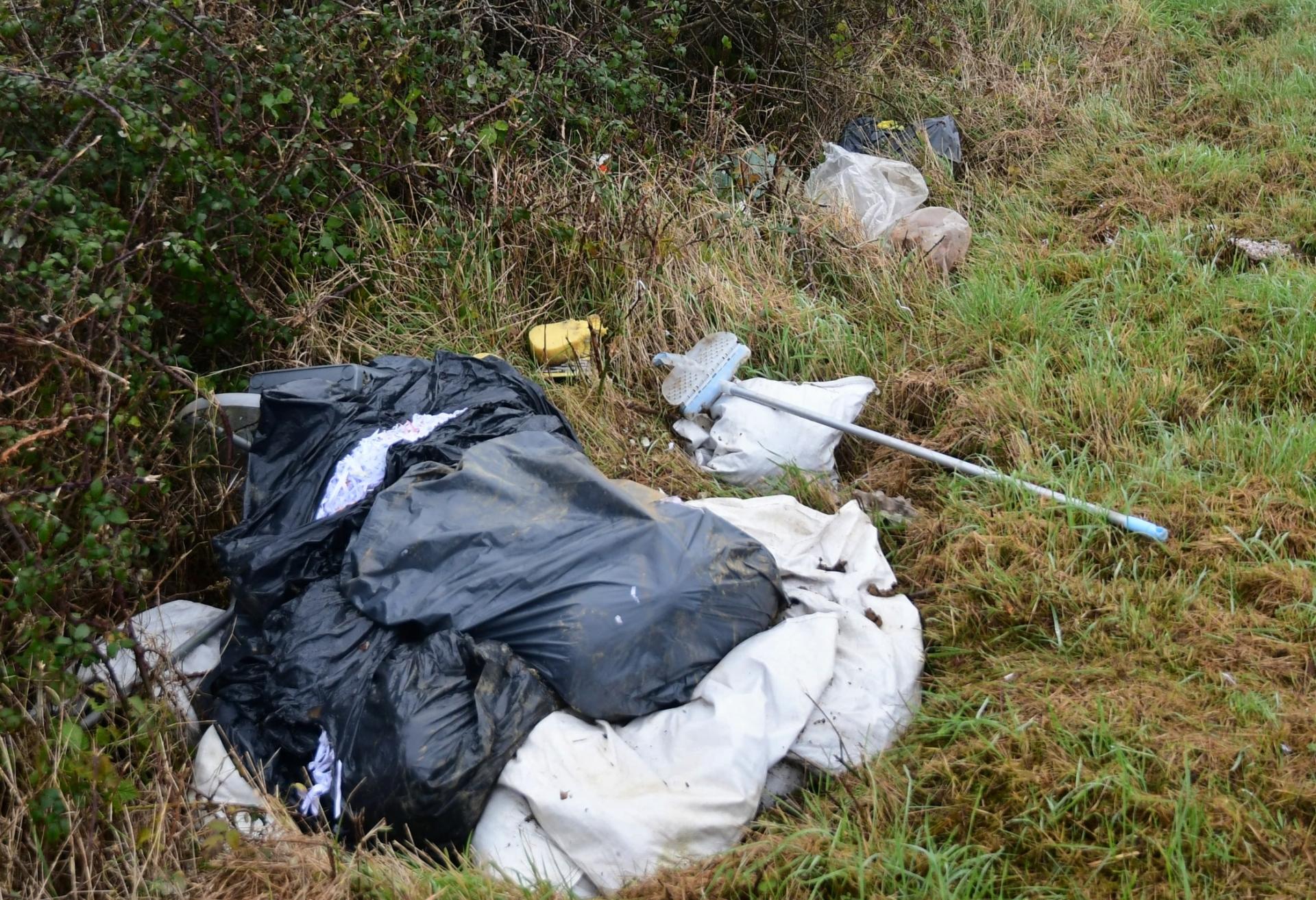 Dumping Bleach Road